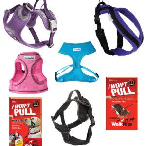 Harnesses & Headcollars